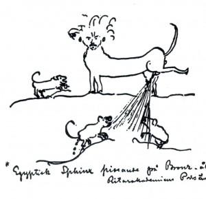 Strindberg som sfinx